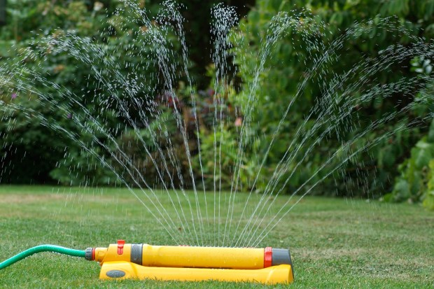 Should You Rake Your Lawn Spring