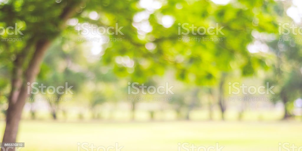 Best Park Background Stock Photos Pictures Amp Royalty Free