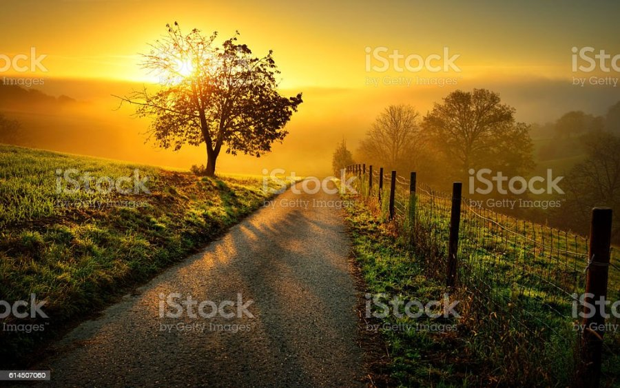 Royalty Free Landscapes Pictures  Images and Stock Photos   iStock Idyllic rural landscape in golden light stock photo