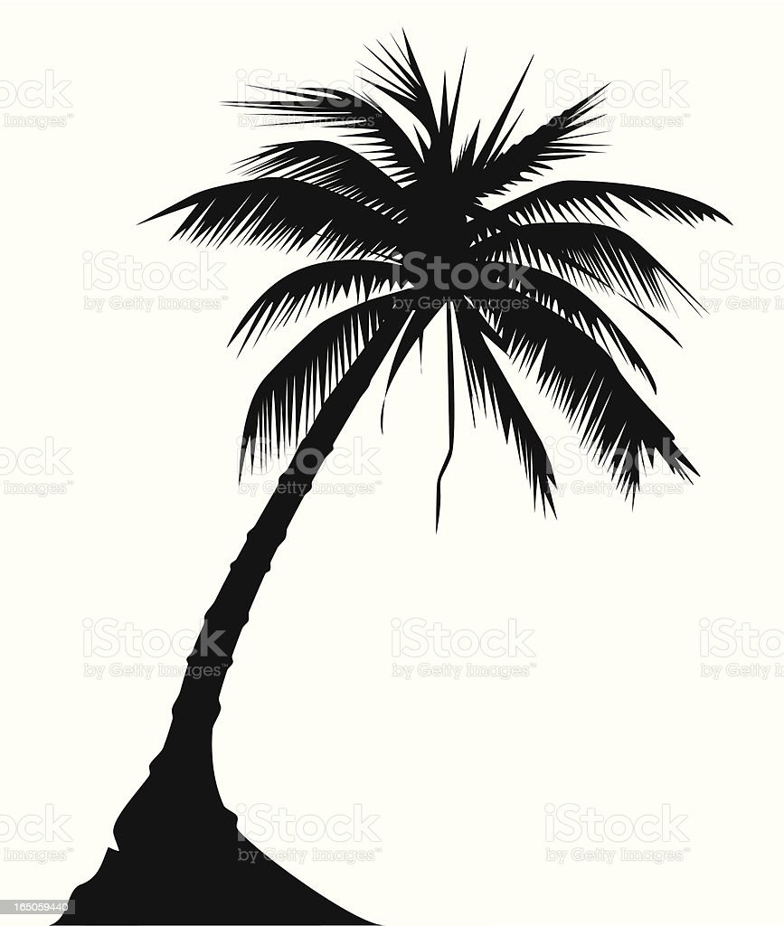 Palm Tree Vector Stock Vector Art Amp More Images Of Abstract 165059440 Istock