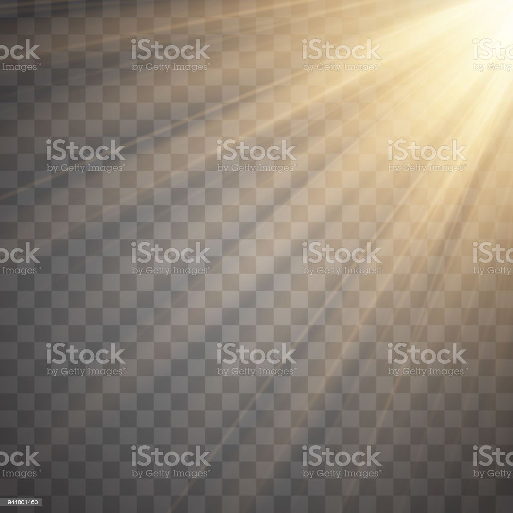 Sun Rays With Beams Isolated On Transparent Background Golden Spotlight Sun Flash Vector