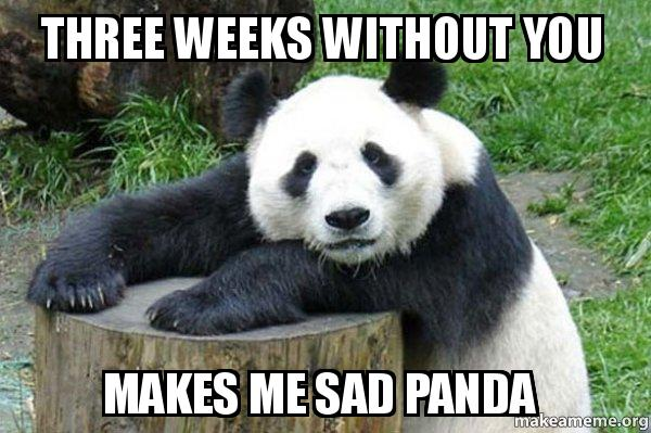 Three weeks without you Makes me sad panda - Confession ...
