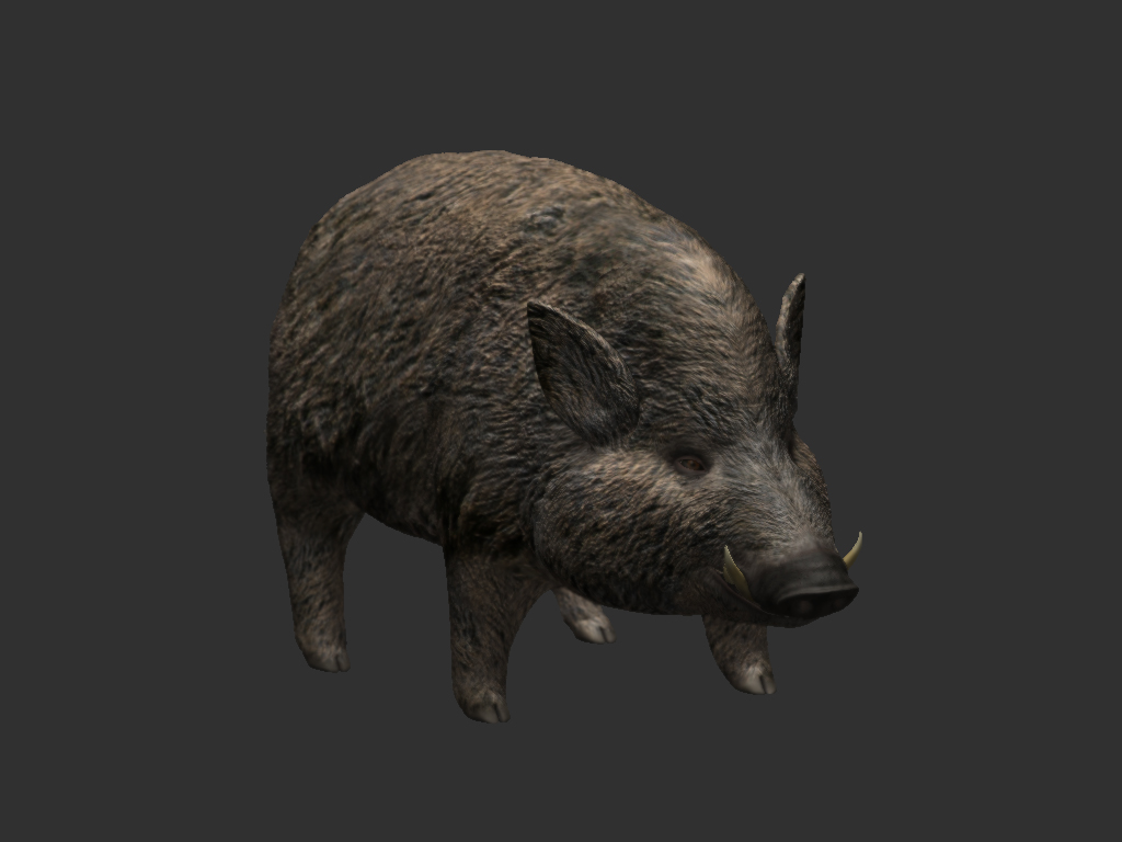 Platypus Animal Skyrim V