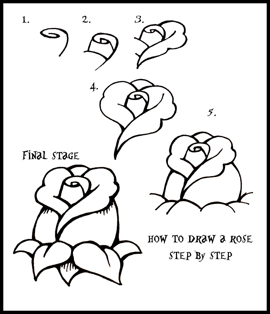 how to draw a rose - HD 944×1099