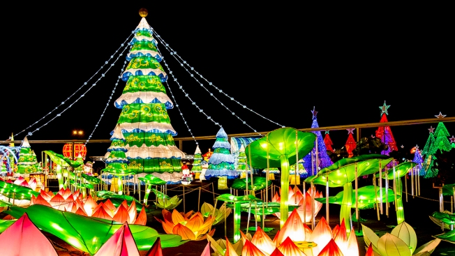 Atlanta Carnival Lights