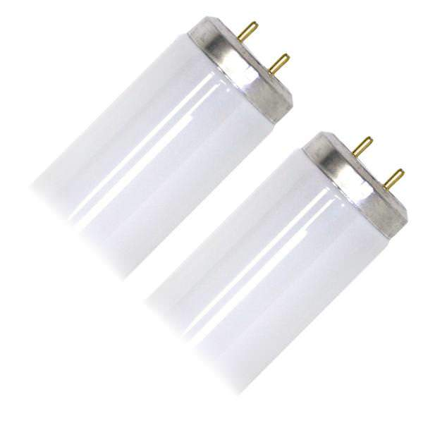Fluorescent Light Bulbs 48 Inch