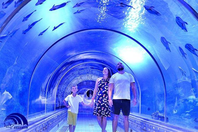 Hurghada Grand Aquarium Entrance Ticket Hurghada Egypt