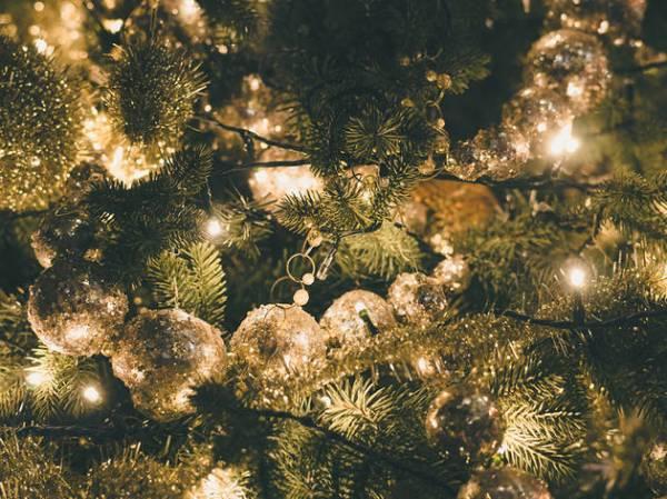 christmas lights miami # 28