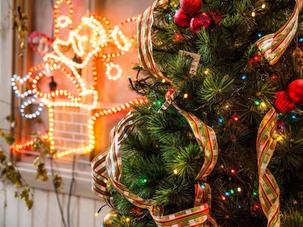 christmas lights miami # 7