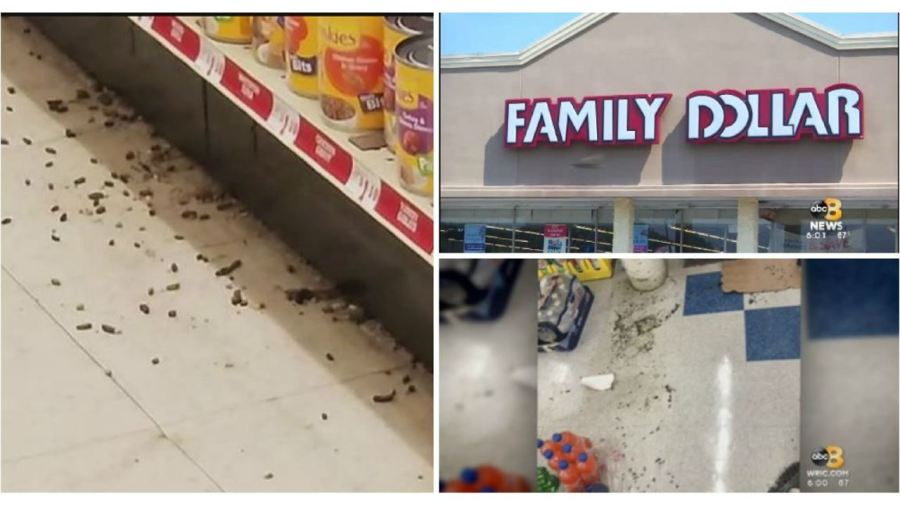Customers  disgusted  after rat droppings found at two local Family     Customers  disgusted  after rat droppings found at two local Family Dollar  stores