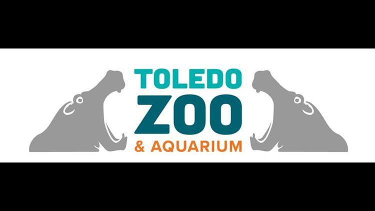 Toledo Zoo Lights Christmas Coupons