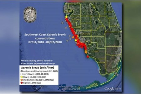 New map shows red tide problems worsening along Florida s coast     The FWC has released an updated red tide map that shows the issue expanding  along Florida s