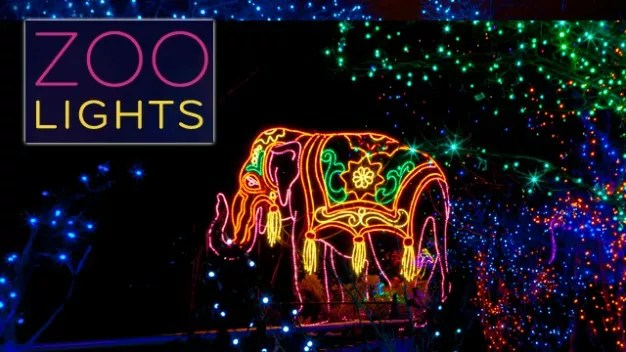 Zoo Lights Denver 2017
