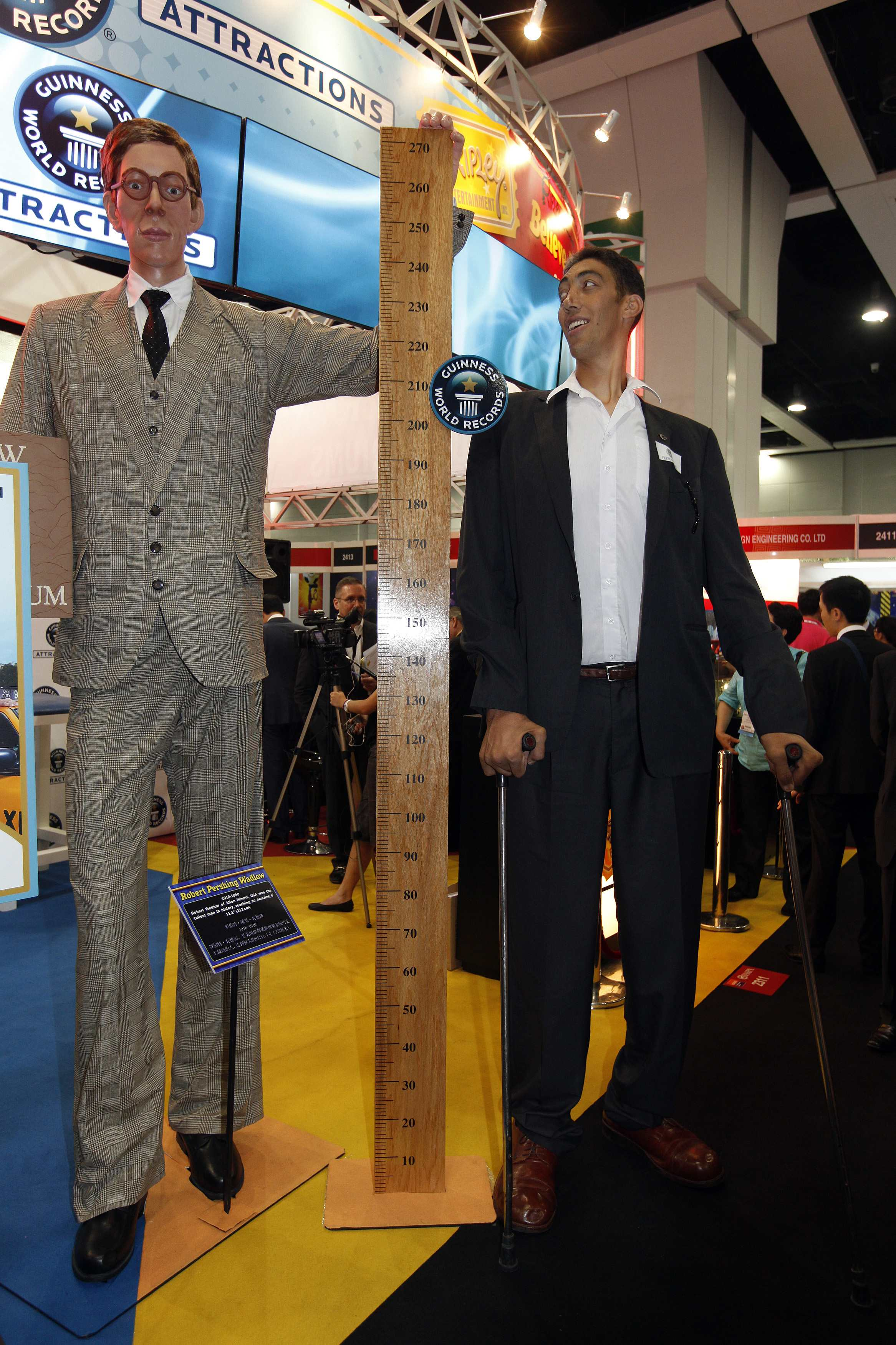 Robert Wadlow Compared Yao Ming