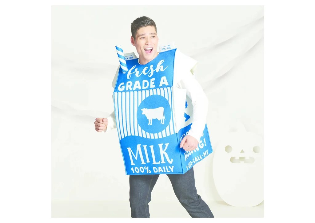 Carton Diy Milk Costume