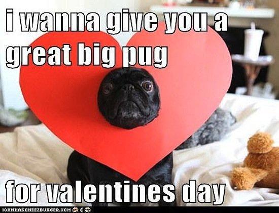 Valentine's Day Memes   POPSUGAR Australia Tech
