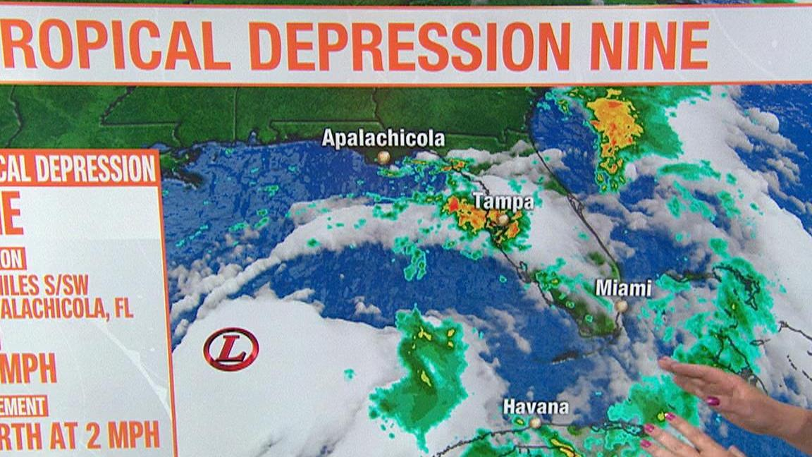 HD Decor Images » Gulf system expected to become Tropical Storm Hermine   NBC News