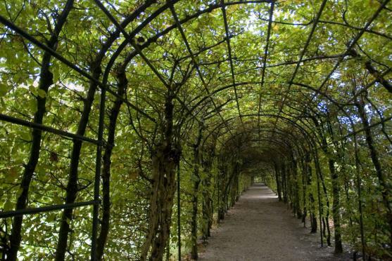 Garden Arche Design Ideas Get Inspired By Photos Of Garden Arches From Australian Designers