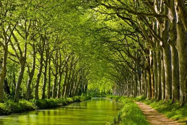 La Historia Del Canal Del Mediod 237 A En Toulouse Me Gusta