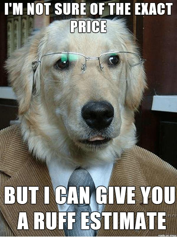 Business Dog Meme Guy