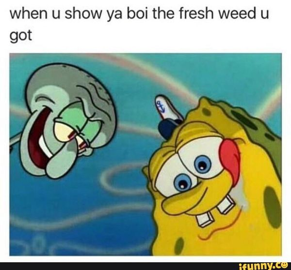 Hilarious Jokes When High