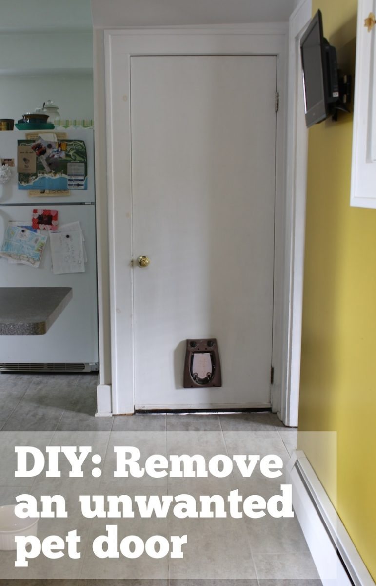 How To Patch A Hole In A Hollow Door Merrypad