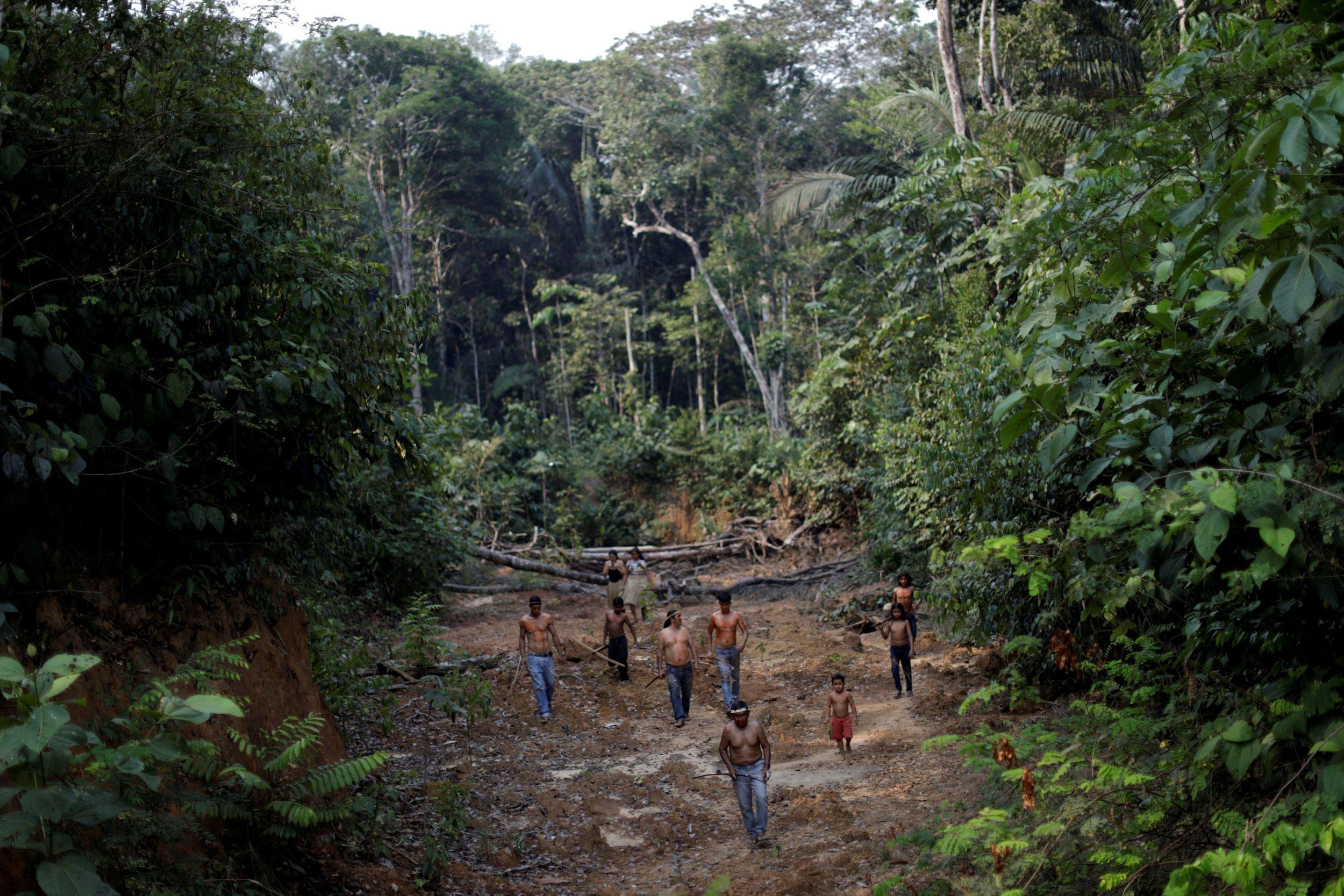 amazon rainforest location - HD2500×1667