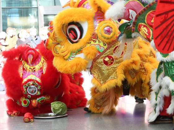 Lunar New Year Celebration   Museum of Fine Arts  Boston Audience