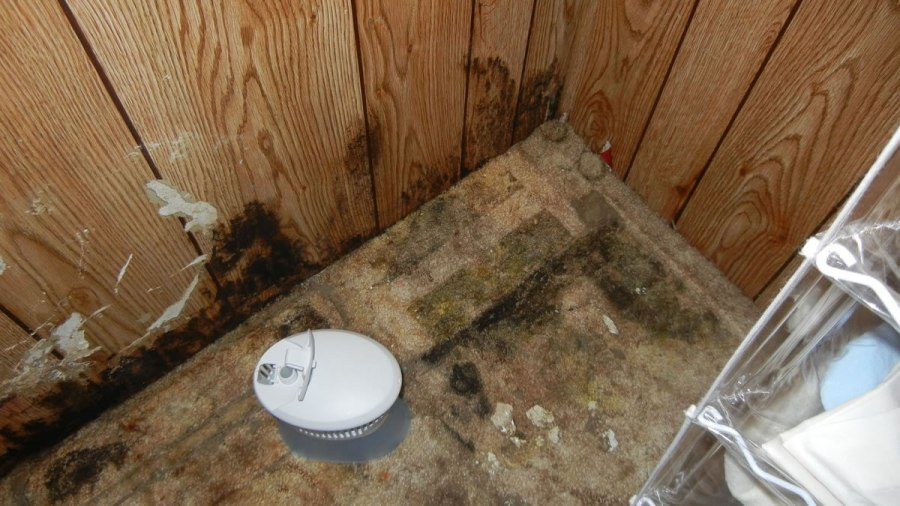 Mold and Rot   Mobile Home Owner Tips It doesn t take a lot of time to inspect your house and it is really worth  your time to look at what you own and take care