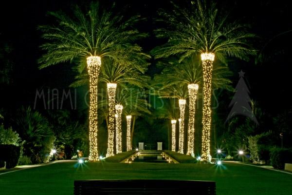 christmas lights miami # 4