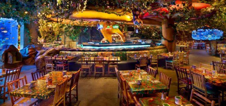 Best Table Service Restaurants At Disney S Animal Kingdom