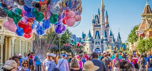 Disney balloon vendor