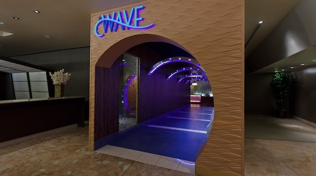 The Wave Disney