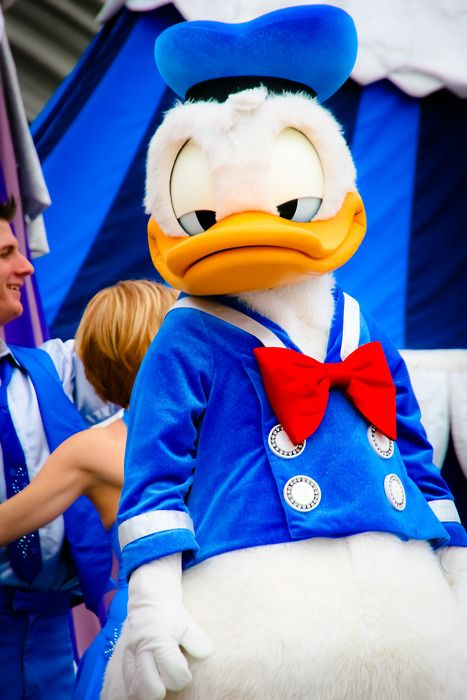 Donald Duck Disney World