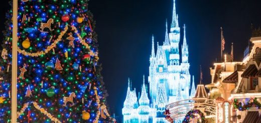 When Do Christmas Decorations Go Up At Magic Kingdom Archives