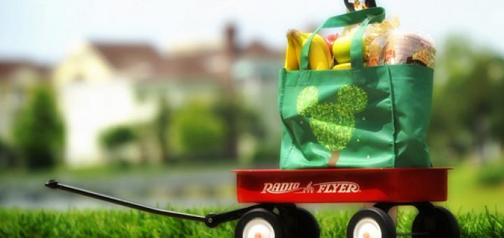 Your Guide To Having Groceries Delivered To Your Walt Disney