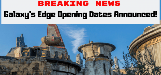 Galaxy's Edge Opening Date Announced