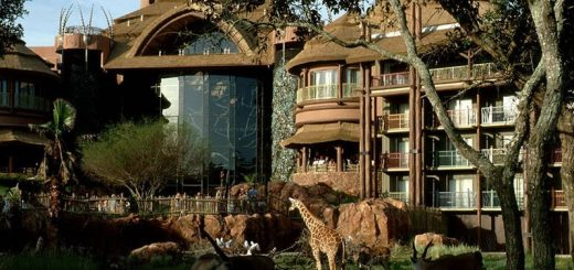 Animal Kingdom Jambo House