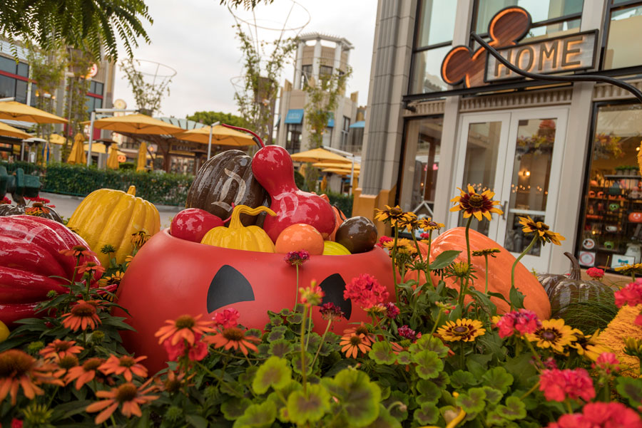 Downtown Disney Halloween