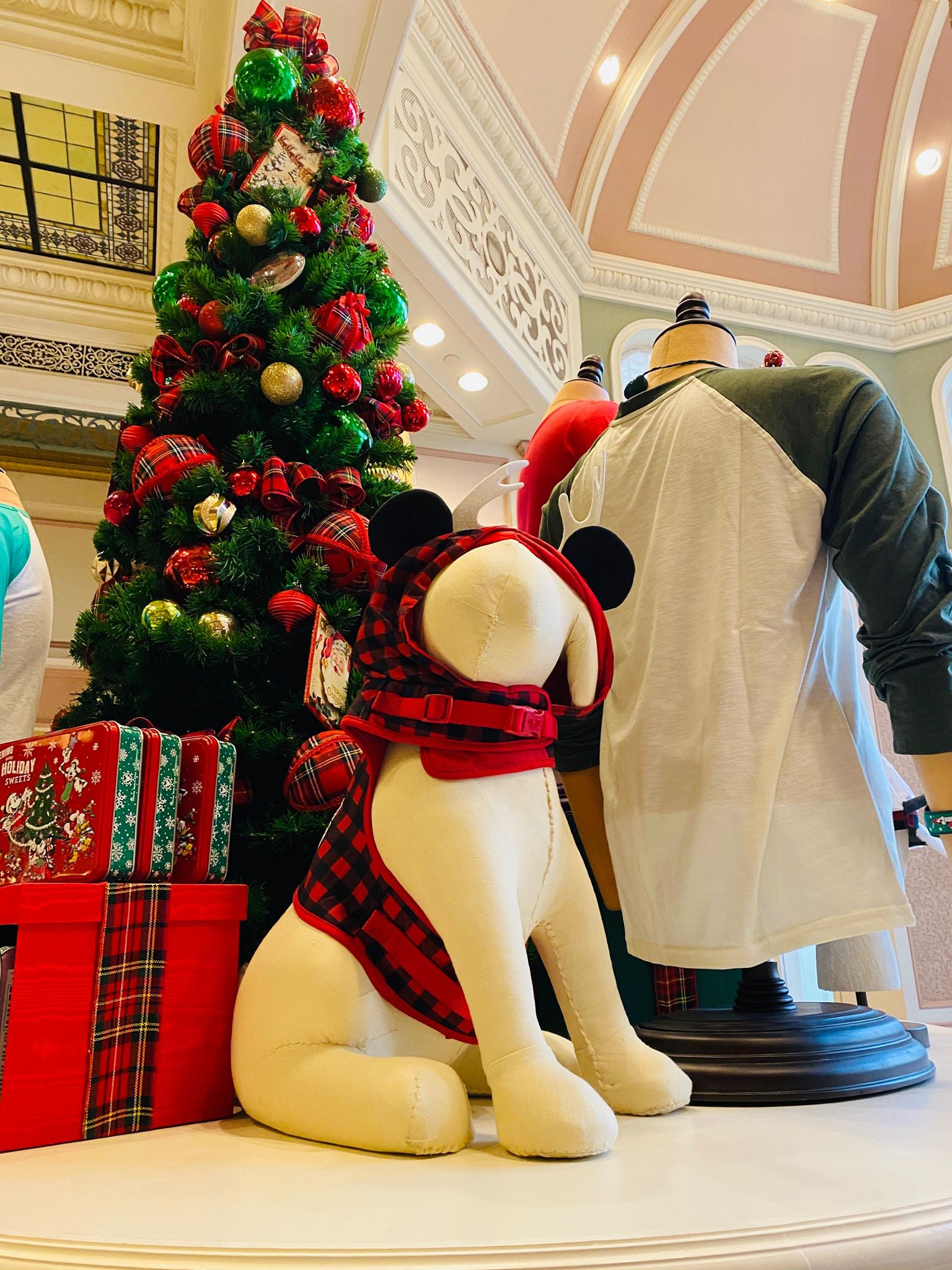 Christmas Dog outfit