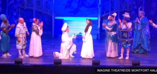 Aladdin proposes to Jasmine
