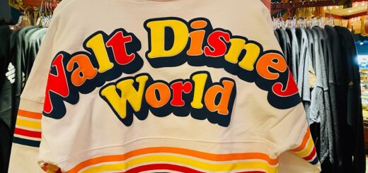 retro Disney spirit jersey