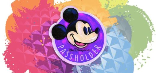 Disney World Annual Passes