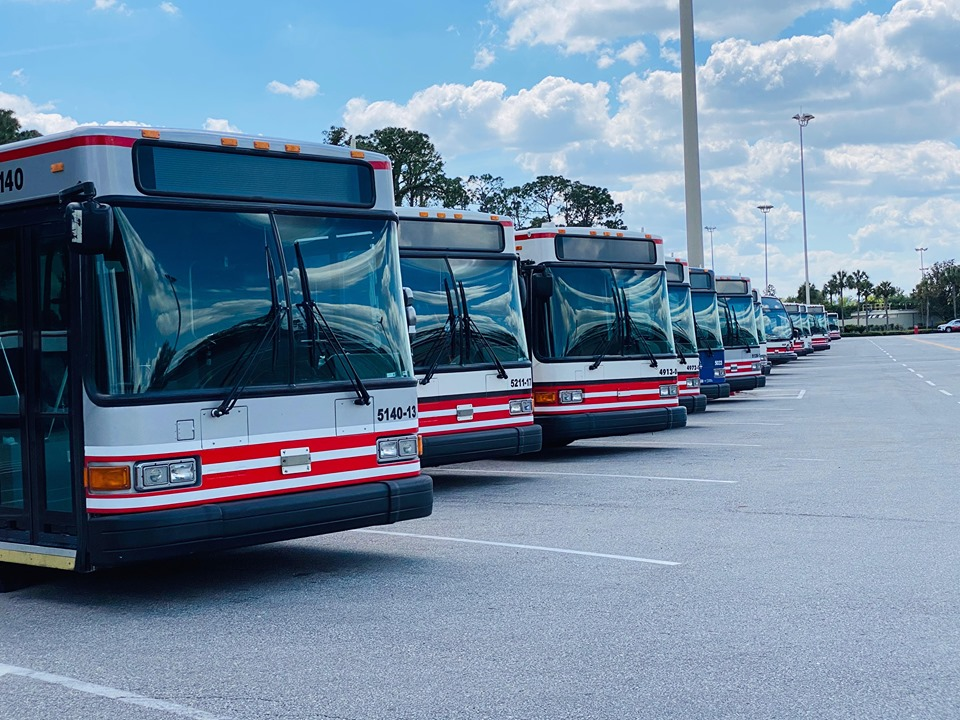 Resort Buses