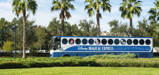 Magical Express petition