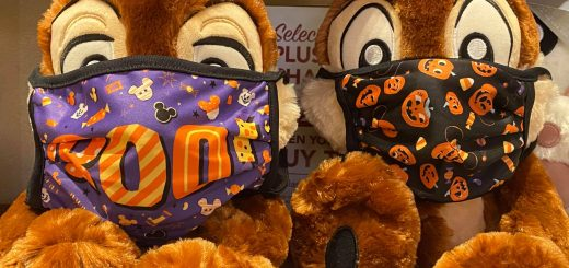 Disney World masks
