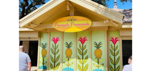 Pineapple Promenade Outdoor Kitchen