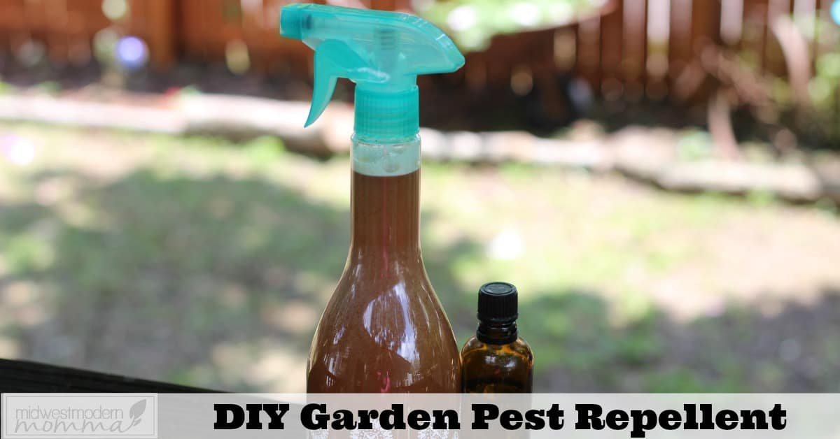 Natural Pest Control has never been easier than with our DIY Garden Pest Repellent Spray! Make a batch of this easy and effective spray to keep critters off your plants this season!