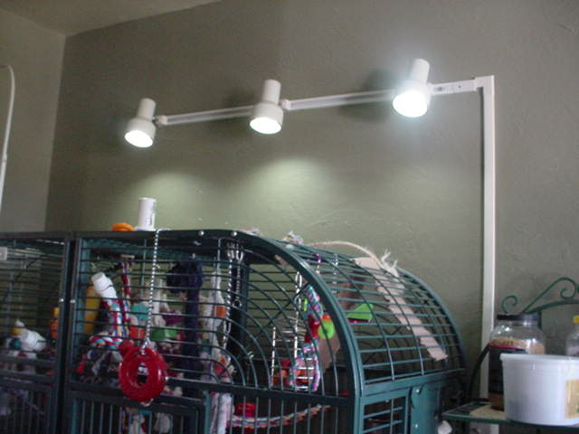 Menards Ceiling Lights