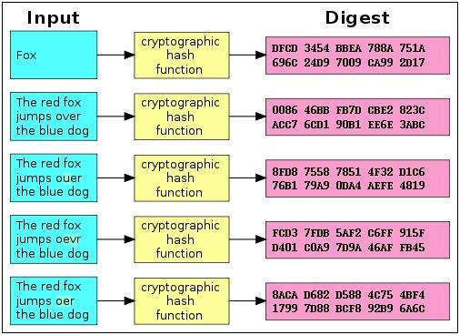 Алгоритм sha256